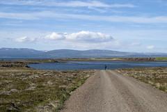 Breiafjrur, Iceland (Tiphaine Rolland) Tags: ocean road sea mer water grass iceland nikon eau path route 1855mm 1855 chemin herbe islande ocan 2016 breiafjrur vatnsnes d3000 nikond3000