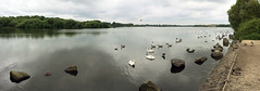 20-52: pennington flash (matt_in_a_field) Tags: lake water mobile swim flash ironman panoramic pennington iphone