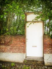 Closed Door. (enneafive) Tags: door old brick green abandoned closed olympus omd ruined helenkeller em5