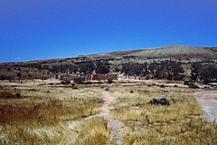 The Kanyaka homestead ruins south of Hawker (Stefan Ulrich Fischer) Tags: 35mm outdoor oz australia slide scanned outback analogue southaustralia downunder flindersranges kodakektachrome minoltaxd7