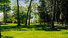 An Afternoon in the Park (joeldinda) Tags: park vacation tree up june fence nikon michigan lawn reststop greatlakes shadowplay upperpeninsula lightandshadow restarea d300 wayside straitsofmackinac 2016 3142 nikond300