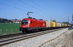 1116 022  bei Grokarolinenfeld  15.04.09 (w. + h. brutzer) Tags: analog train austria sterreich nikon eisenbahn railway zug trains locomotive taurus bb lokomotive elok 1116 eisenbahnen eloks groskarolinenfeld webru