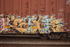SEXES (TheGraffitiHunters) Tags: street blue brown white black art yellow train graffiti colorful paint tracks spray boxcar freight sexes benched benching
