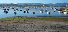 Rampa * (Franco DAlbao) Tags: sea summer landscape boats lumix mar fishing ramp barcos paisaje galicia verano ensenada inlet pesca rampa marinero panxn dalbao francodalbao