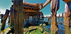 Abandoned Pier; Bandon, OR (KnightedAirs) Tags: ocean wood old abandoned oregon digital marina photography bay coast pier photo dock nikon decay aged destroyed d5200