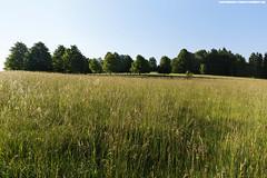 SCHWBISCHE ALB #3 (PADDYSCHMITT.DE) Tags: schwbischealb raichberg zellhornwiese