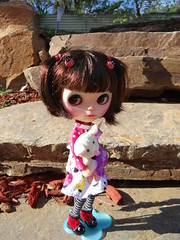 Rosie in the Autumn sun