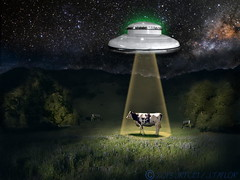 Take me to your leader (jrtce1) Tags: photoshop funny surrealism alien humor surreal ufo nasa galaxy pasture scifi sciencefiction bovine abduction closeencountersofthethirdkind alienabduction intelligentlife alienencounters jrtce1 surrealspaceart