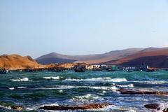Paracas de pescadores (Marcos GP) Tags: peru mar fisherman day clear bahia ica pisco paracas marcosgp