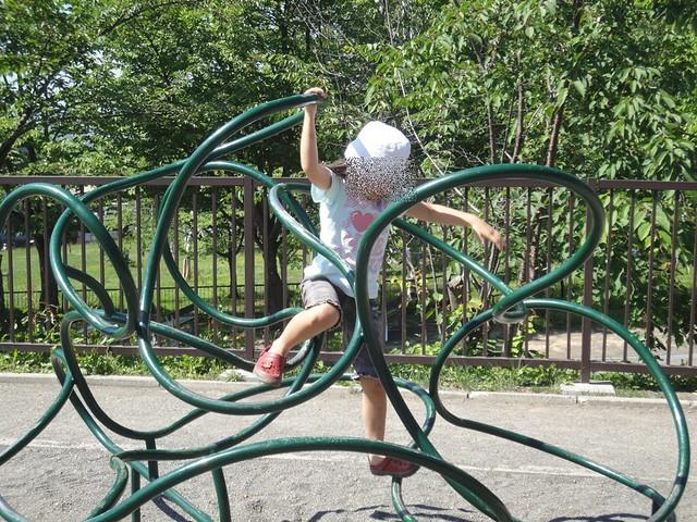 この遊具(+他2種)はサル山のすぐ目の前の広場にあります。 旭川市旭山動物園