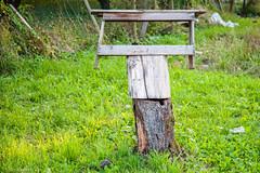 Deutschland - Germany - alltaglich -  Holz100ND700- Nikon D700 (irisisopen f/8 >3Mio) Tags: digital germany deutschland nikon natur pflanzen blumen motive holz farbe d700