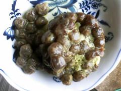 Bubble Tea Brains!!! (Simon Kranefuss) Tags: usa bubbletea wa greentea tapioca everett pearlmilktea photosbysimonkrane