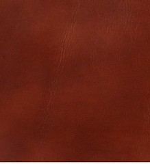 "Frye Smooth Full-Grain Leather • <a style=""font-size:0.8em;"" href=""http://www.flickr.com/photos/65413117@N03/9616598836/"" target=""_blank"">View on Flickr</a>"