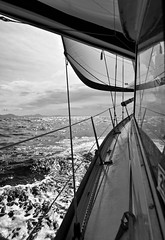 North by north west (Dafydd Penguin) Tags: bw white black by wales sailboat coast boat nikon sailing yacht north cruising explore coastal boating sail 20mm nikkor peninsula f28 tack starboard yachting d600 weat llyen