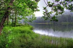 D. Karadeniz - Batum 197-h (Ozcan MALKOCER) Tags: sky people lake reflection tree water fog pine forest turkey artvin woodenpier 18135mm canoneos7d gettyimagesmiddleeast dkaradenizbatum20130724 dkaradenizbatum197h