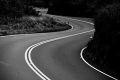 Road to Hana (JonPac) Tags: usa sketchy hawaii colorado tour curves windy maui hana 2012 2013 accidentwaitingaroundeveryturn
