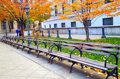 Plenty of Benches, NYC (damaris.reda) Tags: uploaded:by=flickrmobile flickriosapp:filter=nofilter