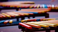 ColoreS (Blas Torillo) Tags: wood colors méxico bench mexico madera nikon colores puebla banca professionalphotography fotografíaprofesional mexicanphotographers d5200 cityofideas fotógrafosmexicanos ciudaddelasideas nikond5200