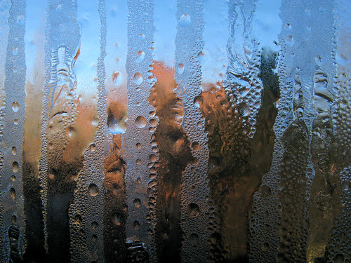 Window Ice_2098