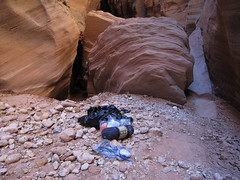 Some hikers had freaked out and left their gear and hiked out. That's going to end up in the Colorado River during the next flash flood.