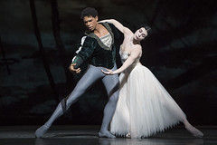 Your reaction: Giselle in cinemas