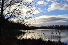 Surrey Lake Park ~EXPLORE~ (careth@2012) Tags: trees sky sun sunlight reflection nature silhouette clouds sunrise landscape outdoors dawn nikon scenery view britishcolumbia wilderness surreylakepark d3100 nikond3100 vision:sunset=064 vision:mountain=0733 vision:car=0546 vision:outdoor=0807 vision:sky=0966 vision:clouds=0721