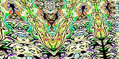 Mar 5 (joybidge) Tags: canada art awesome colourful ornate psychedelic exciting kaleidoscopic detailed alteredimage fractallike veganartist naturepatternscanada philscomputerart magicalgeometry inkblottishdesigns