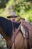 Tom IMG_6266 (blackhawk32) Tags: autumn horses horse tom cowboy shell wranglers wyoming rivercrossing wy wrangler shellwyoming hideoutlodge
