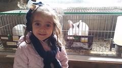 orvalle-infantil-granjaelacebo (7)
