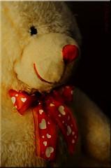 Valentine's Bow (Jo Zimny) Tags: red white black eye mouth nose teddy valentine bow intheshadows