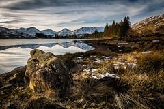 Loch Arklet (GenerationX) Tags: winter brown tree grass yellow rock reflections landscape mirror scotland unitedkingdom scottish neil boulders trossachs lochlomond barr arrocharalps benvorlich benvane inveruglas beinnnarnain inversnaid locharklet beinnime snowgrass