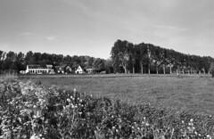Parkwijk, Haarlem (Sean Anderson Classic Photography) Tags: contax m42 fomapan100 bwgreenfilter contaxrx parkwijk pmkpyro 29mm meyeroptik orestegon meyeroptikorestegon29mmf28