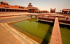 Fatehpur Sikri Palace 117 (David OMalley) Tags: india muslim islam agra palace mosque pilgrimage akbar masjid allah islamic pradesh fatehpur sikri muhammed uttar jama darwaza buland sikari vijaypur