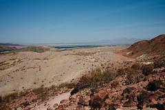 5R6K2557 (ATeshima) Tags: arizona nature havasu