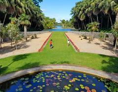 Kids At Play (Helen) Tags: garden florida miami outdoor tropical botanicgarden fairchildtropicalbotanicgarden