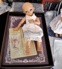 She is so cute! (nekomuchuu63) Tags: doll box 14 opening bjd 16 fairyland luka lishe minifee littlefee