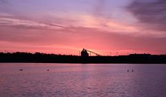 woooww (sophiepoto) Tags: sky sun lake color bird nature water girl sunrise dock ripple write