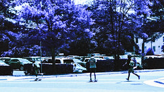 Three Skaters (hpaton1) Tags: film analog purple charlotte canonef2470mmf28l canoneos1v lomochrome