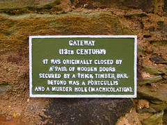 0016 (PalmerJZ) Tags: travel ireland castle scotland whisky scotch falconry