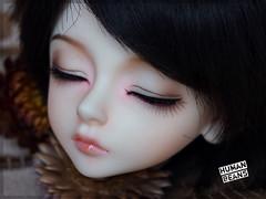 Luts Kid Delf Bory sleeping (Human Beans) Tags: bjd luts abjd bory faceup humanbeans kiddelf