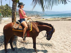 #HCwinds #horsebackriding #oceanview #tropical #oceanside #palmtree #nature #inthewild #openair #breeze #seabreeze #HayanCharlston #enjoy #life #adventure #travel #tourlife #workhard #playhard #puertovallarta #mexico (HCwinds) Tags: life travel nature mexico adventure oceanside palmtree enjoy tropical puertovallarta breeze oceanview horsebackriding openair seabreeze workhard inthewild tourlife playhard hcwinds hayancharlston