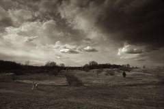 Running From the Storm (Marcelino Akemann) Tags: bw film field clouds gitzo runningaway darkcloud nikonfa 20mmf28aisnikkor
