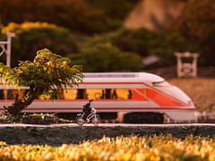 Tobu World Square #1 (J_Fish) Tags: travel japan museum train miniature model police nikko tobuworldsquare