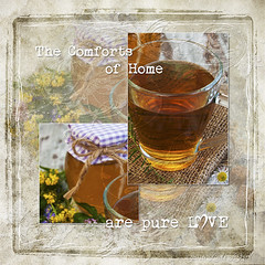ForKim-The Comforts of Home (in_the_light) Tags: flower cup nature yellow leaf drink jasmine honey jar organic teacup wildflower liquid herb freshness burlap ingredient chamomile herbalmedicine ruralscene greencolor goldcolored sweetfood glassmaterial teahotdrink woodmaterial