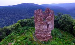 Vrdnika kula (AleksandarM021) Tags: fruskagora fruskogorski manastiri serbia serbiaandmontenegro srbija vojvodina vojvodjanski tvrdjava vrdnik vrdnicka kula
