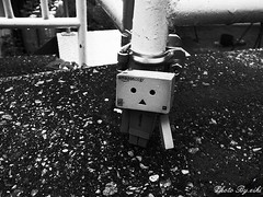 monochrome danboard photo (eikidoll_666) Tags: blackandwhite outdoor monochrome outdoortoyphotography toy toyphotography   figure outdoorphotography danboard