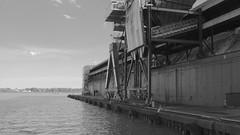 075crpshaconfwlsatbwfwl (citatus) Tags: bw toronto canada evening harbor spring dock pentax harbour sugar ii refinery k3 2016 redpath