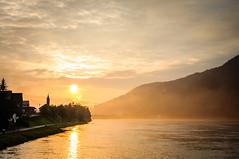 Golden Atmosphere (Rui  Pereira) Tags: light sunset sunlight clouds river austria colours atmosphere danube donau goldenlight donauradweg sunsetcolours danbio wesenufer