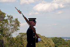 Honor Guard (stevesheriw) Tags: arlington virginia arlingtonnationalcemetery tomboftheunknowns sentinel oldguard