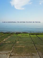 I AM A EUROPEAN (andymag) Tags: uk europe eu referendum englishchannel